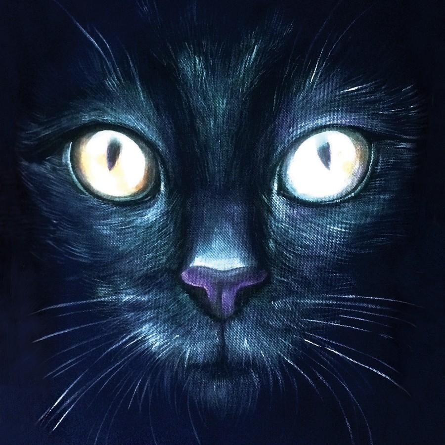 Postcard BLACK CAT