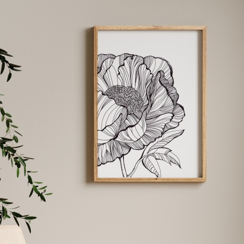 Poster PEONIE LINE. Fragment