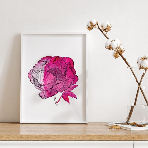 Poster PEONIE RED