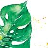 Postcard: MONSTERA GREEN (watercolor)