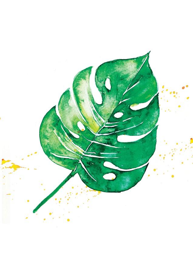 Poster GREEN MONSTERA